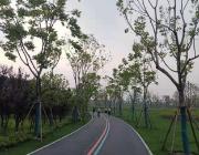 跑遍上海滩之浦东锦绣文化公园,环形跑道绿化高,还带储物柜
