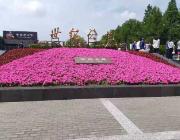 跑遍上海滩之浦东世纪公园,上海标志性跑步圣地